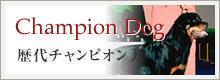 歴代チャンピオン犬